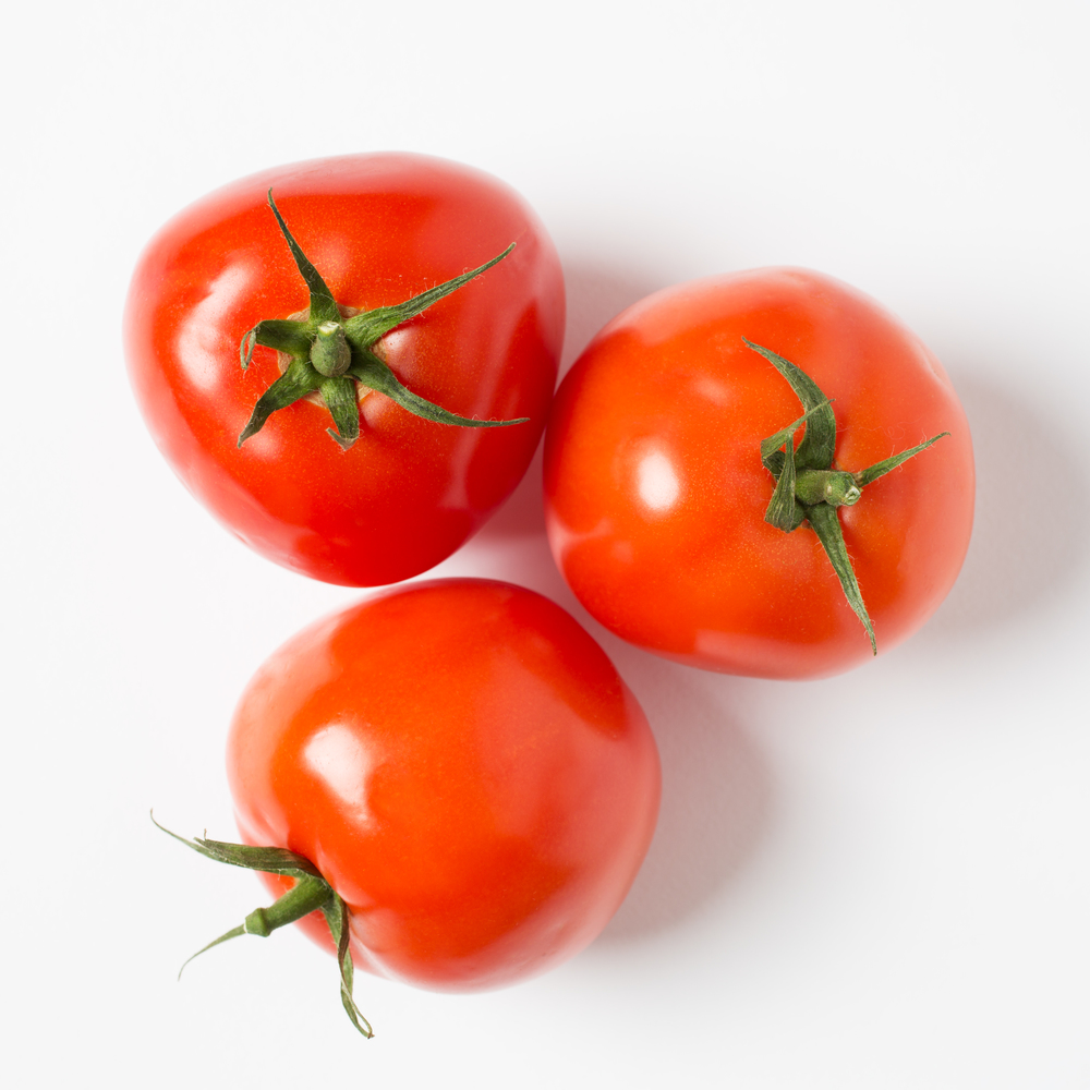 1-tomatoe_X3A8062-f-sq.jpg