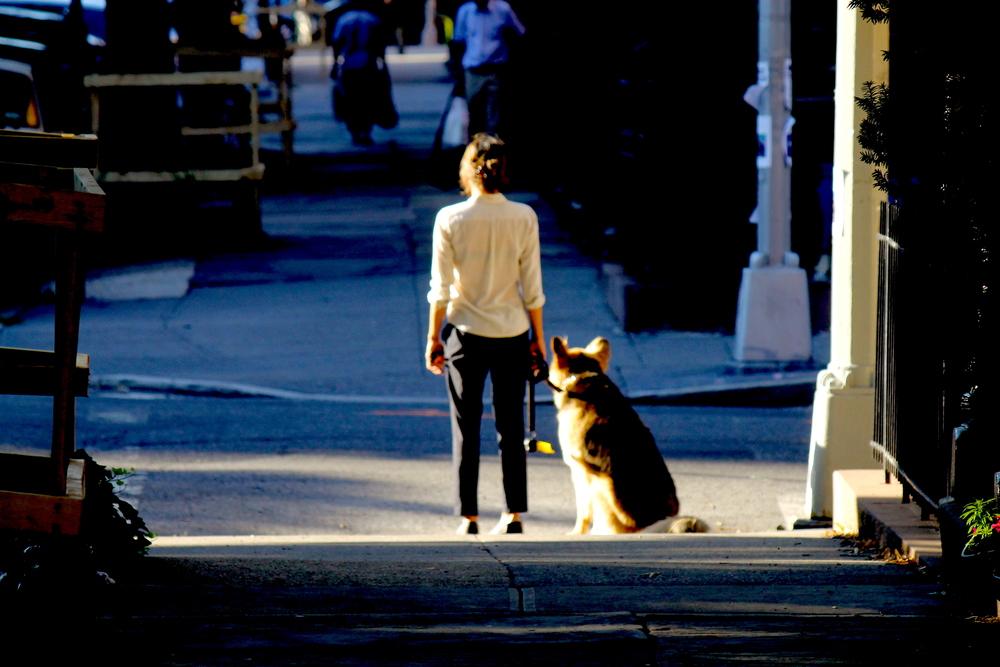 A Woman & A Dog (pt.2)