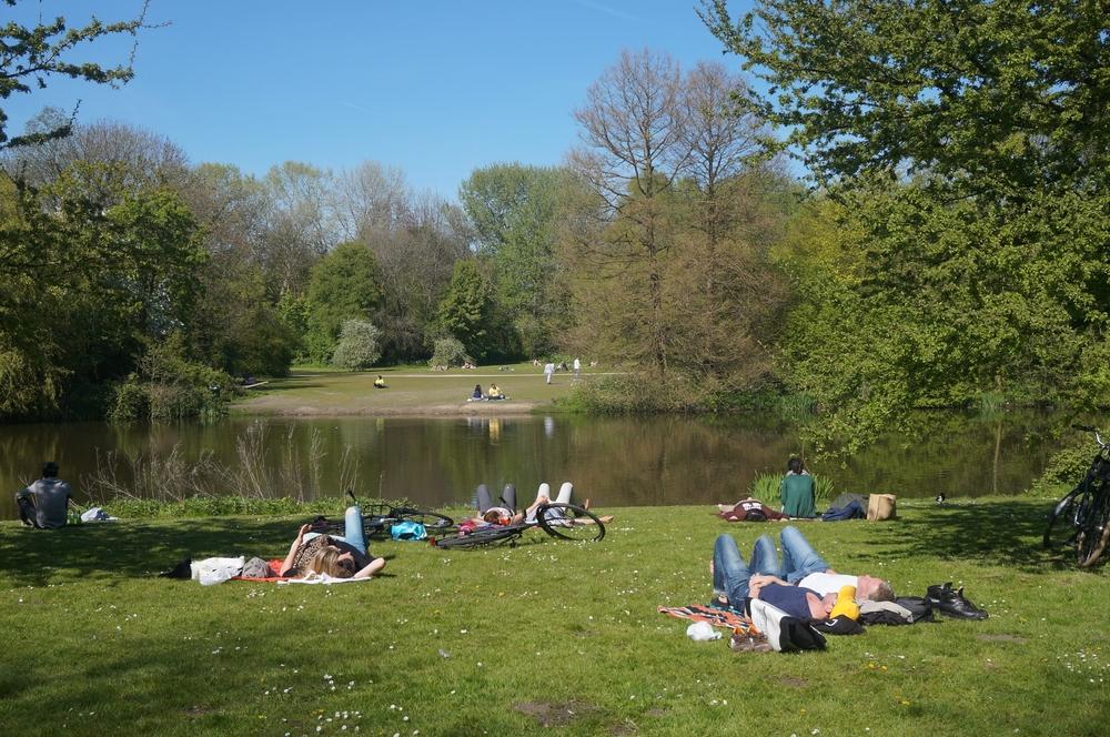 Amsterdam Flevopark裡面享受陽光的人們