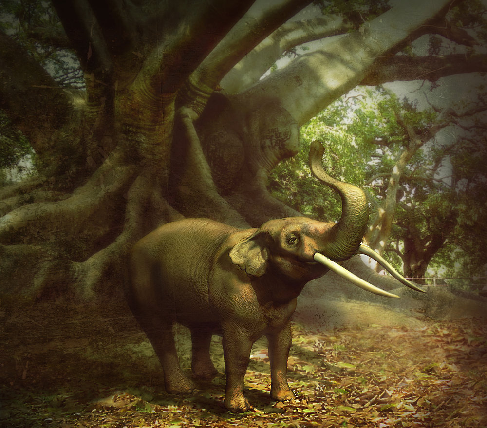 GHOSTS OF GOMPHOTHERES–3d model with textures. Reconstruction of the extinct elephant  Cuvieronius .