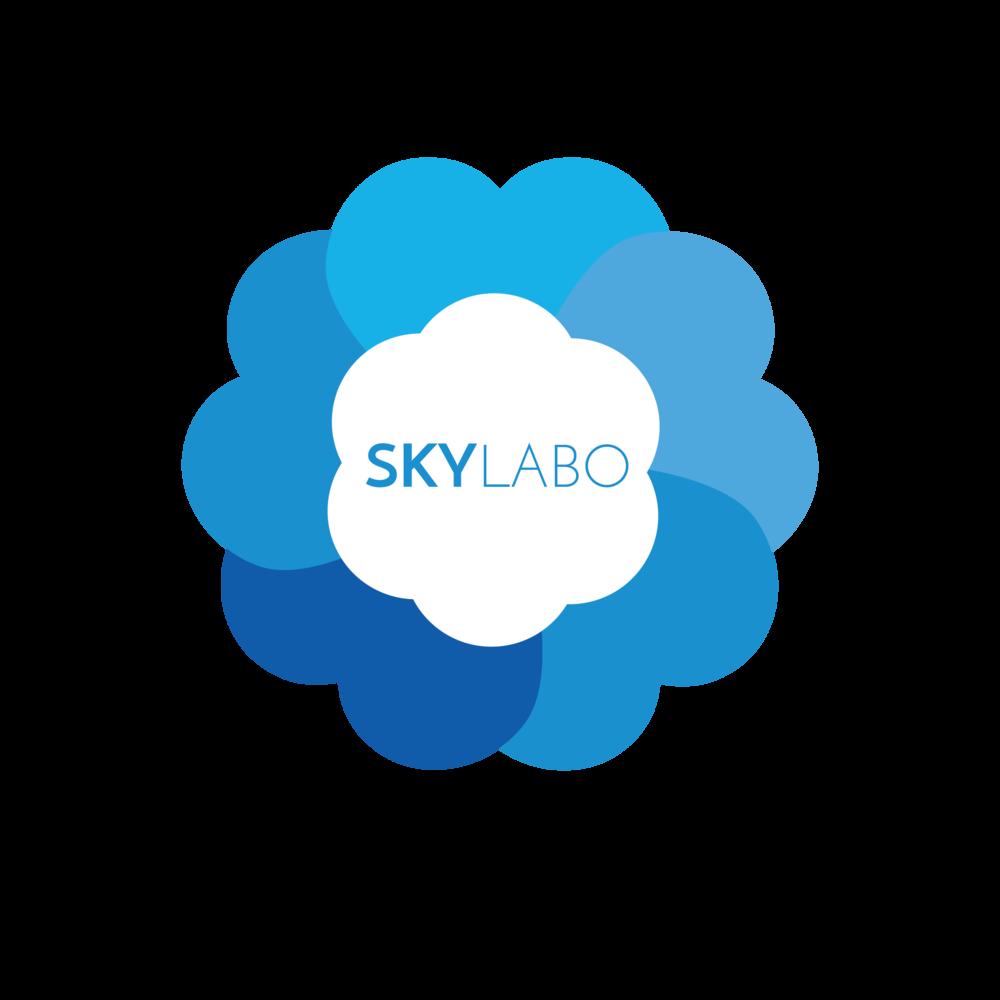 skylabo version 3-10.png