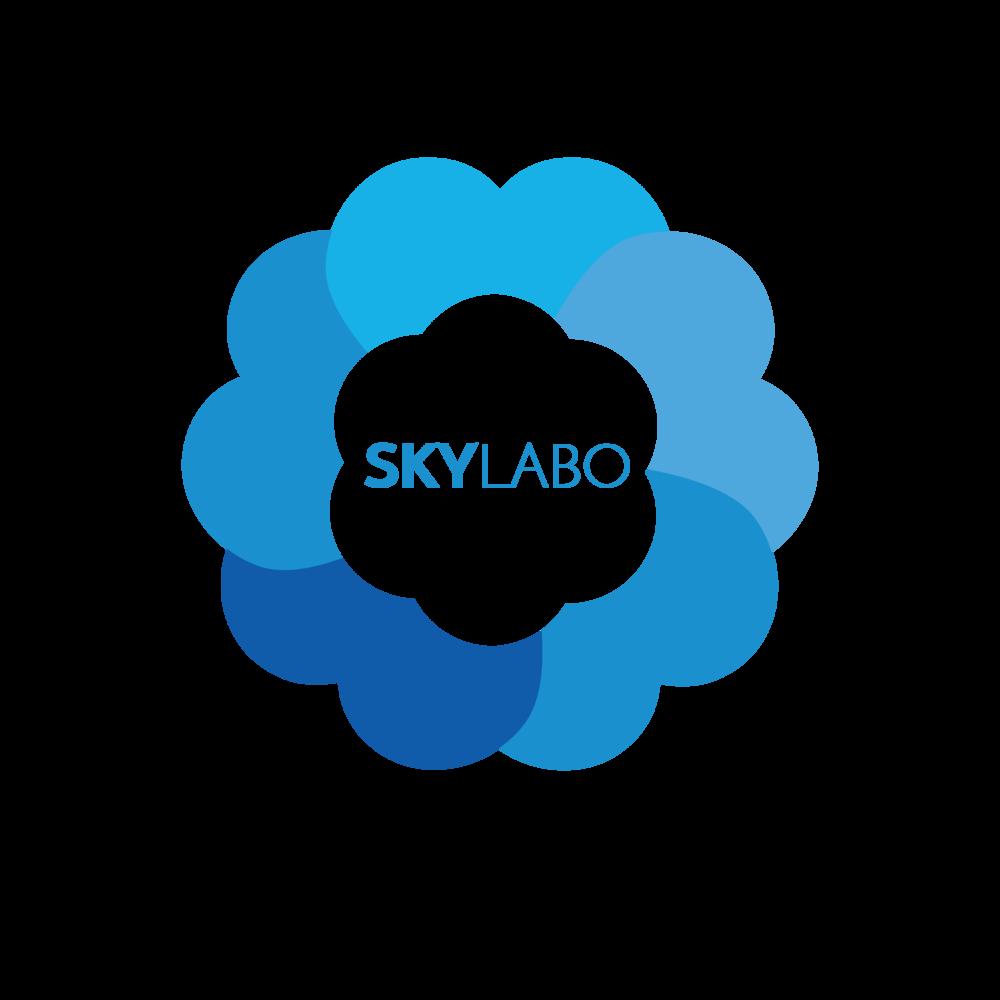 skylabo LOGOS-10.png