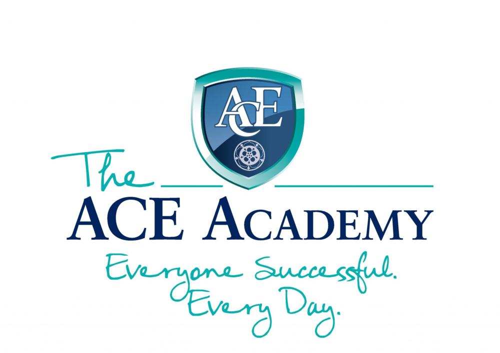 The Ace Academy