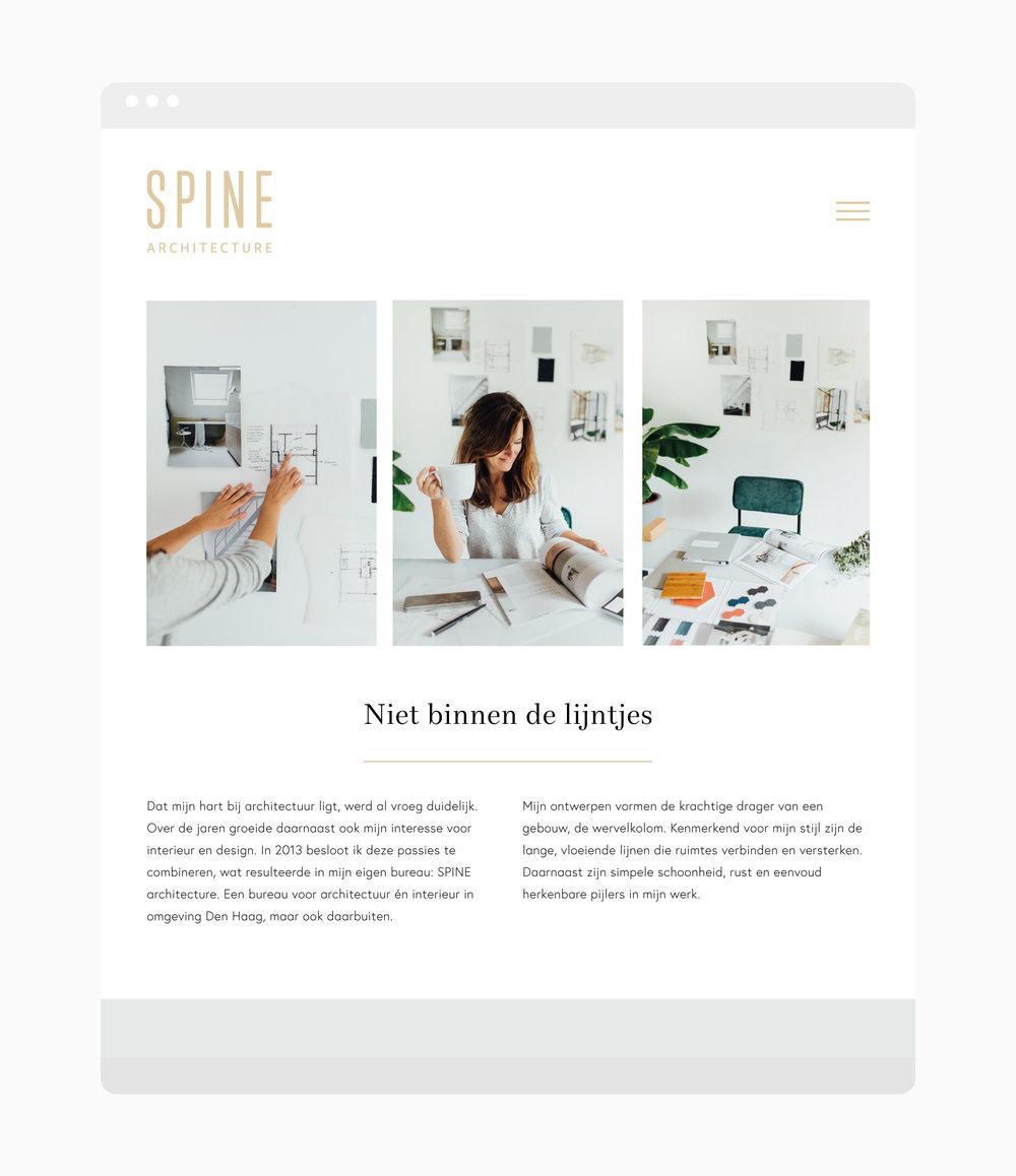 Website-SPINE.jpg