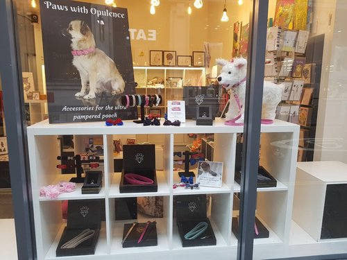 luxury dog business — Blog — Paws with Opulence