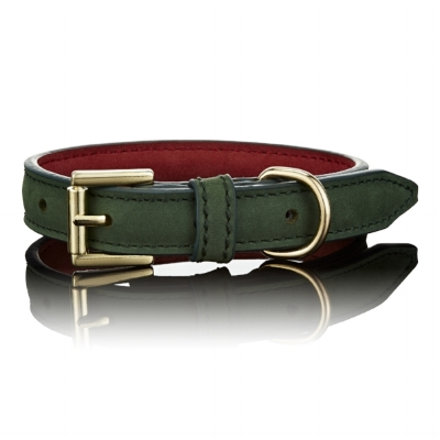 Green Christmas Dog Collar