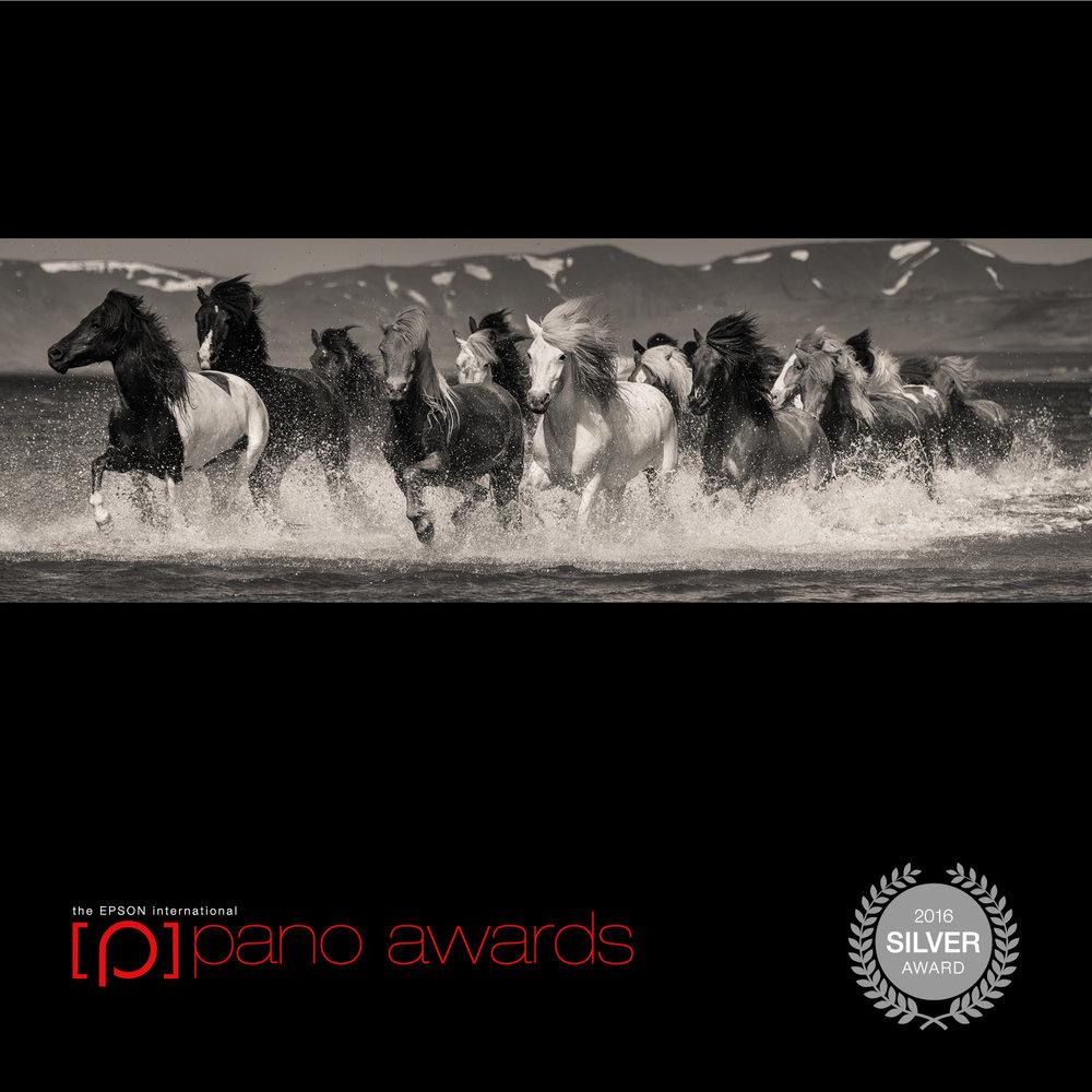 EPSON Silver award