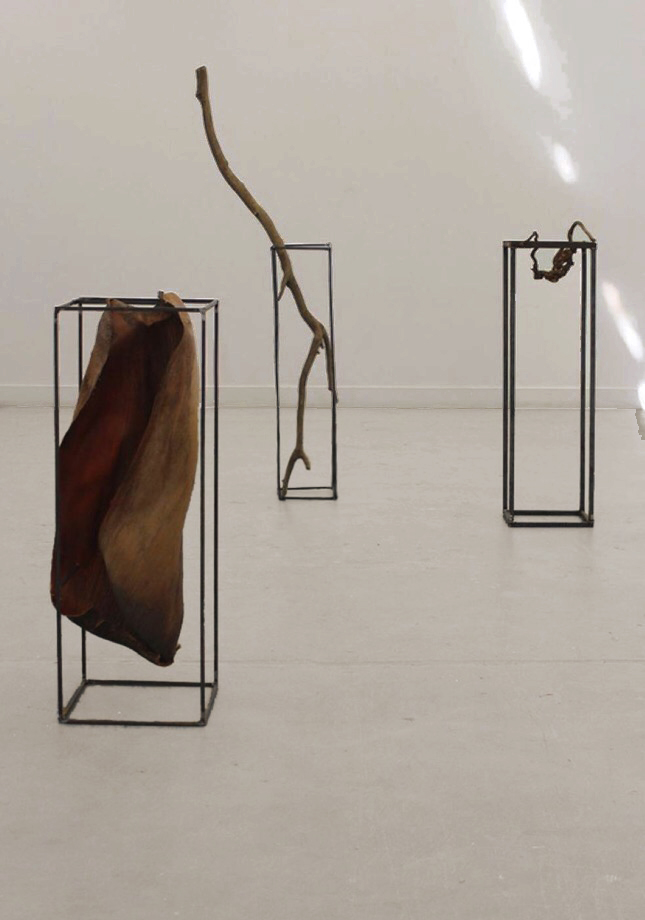 Roots Worn Thin, steel bar, date palm leaf, 150 x 46 x 40 cm, 2016 Man For Ashes, steel bar, eucalyptus branch, 204 x 52 x 34 cm, 2016 Lessons In Shedding, steel bar, tree root, 124 x 36 x 40 cm, 2016