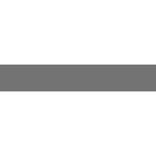 Ayzenberg.png