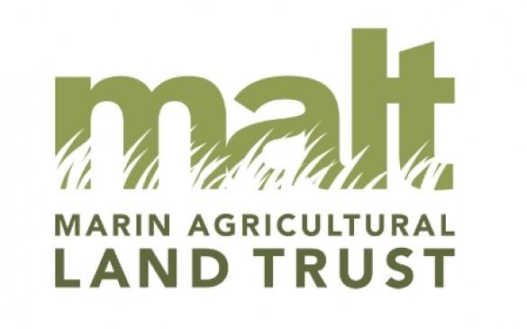 new_malt_logo_reduced.585x0.jpg