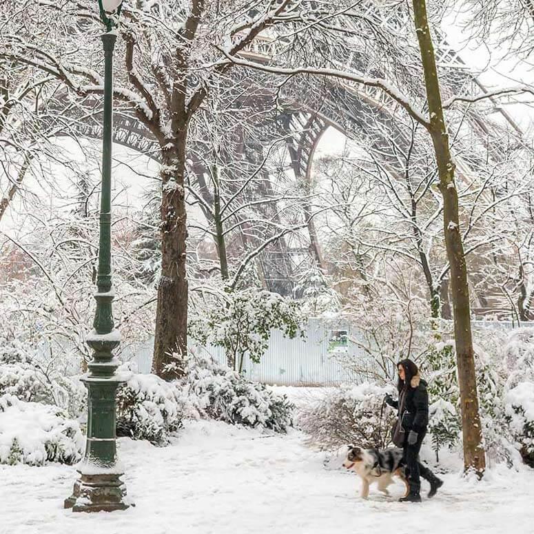 Winter -