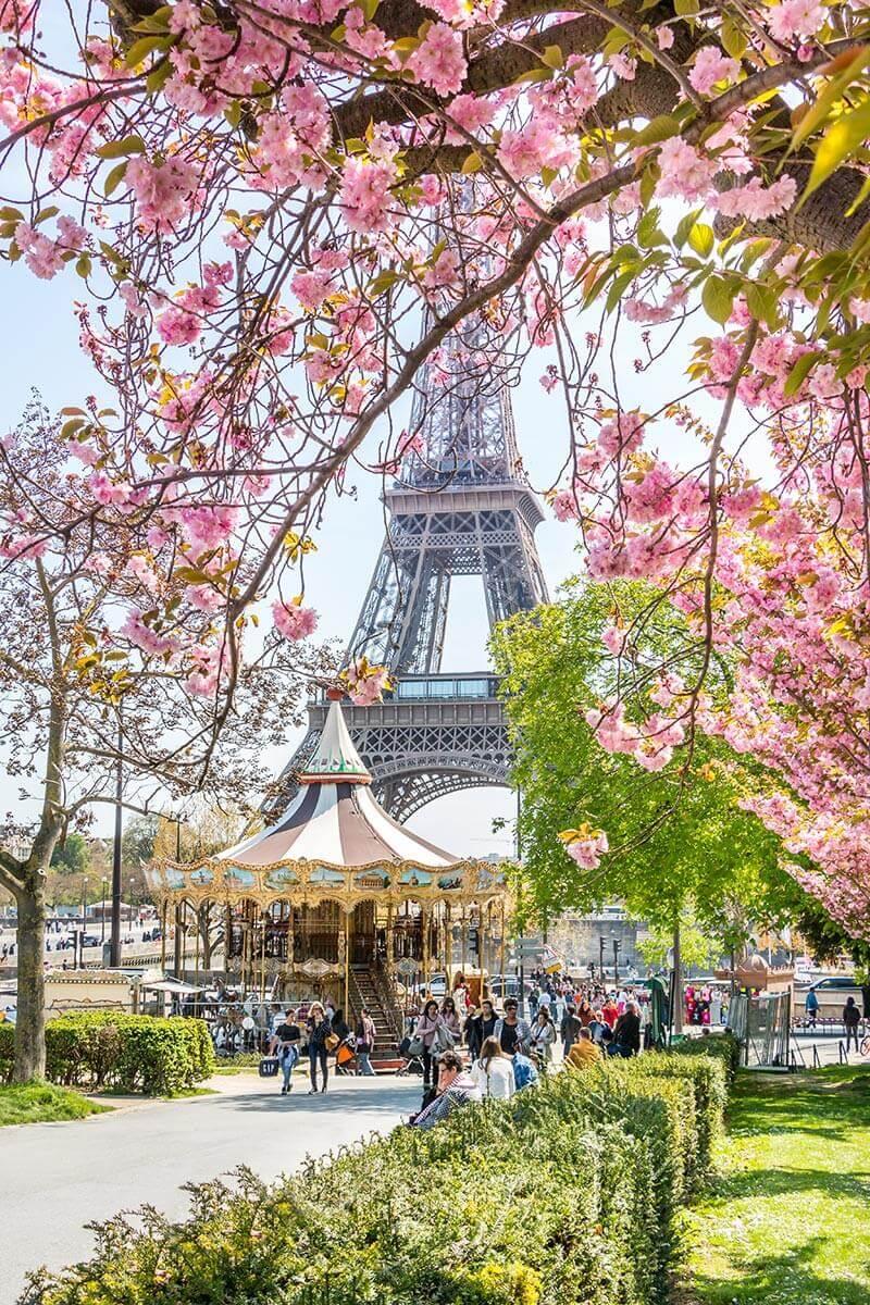 Spring-in-Paris-1.jpg