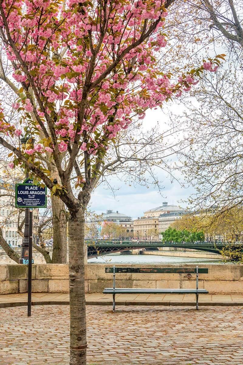 Spring-in-Paris-3.jpg