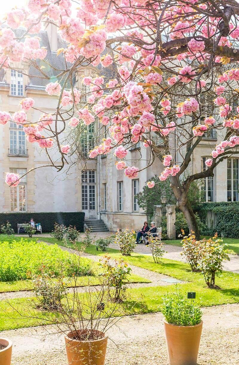 Spring-in-Paris-4.jpg