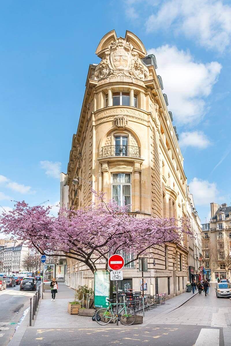 Spring-in-Paris-6.jpg