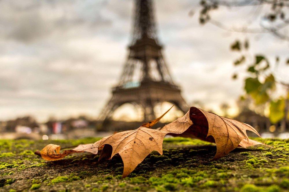 Autumn-in-Paris-4.jpg