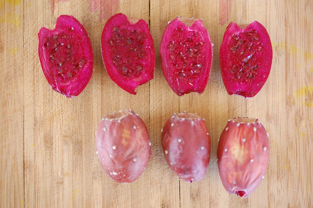 "local variety of wild prickly pear fruit - ""copper brick reds"""