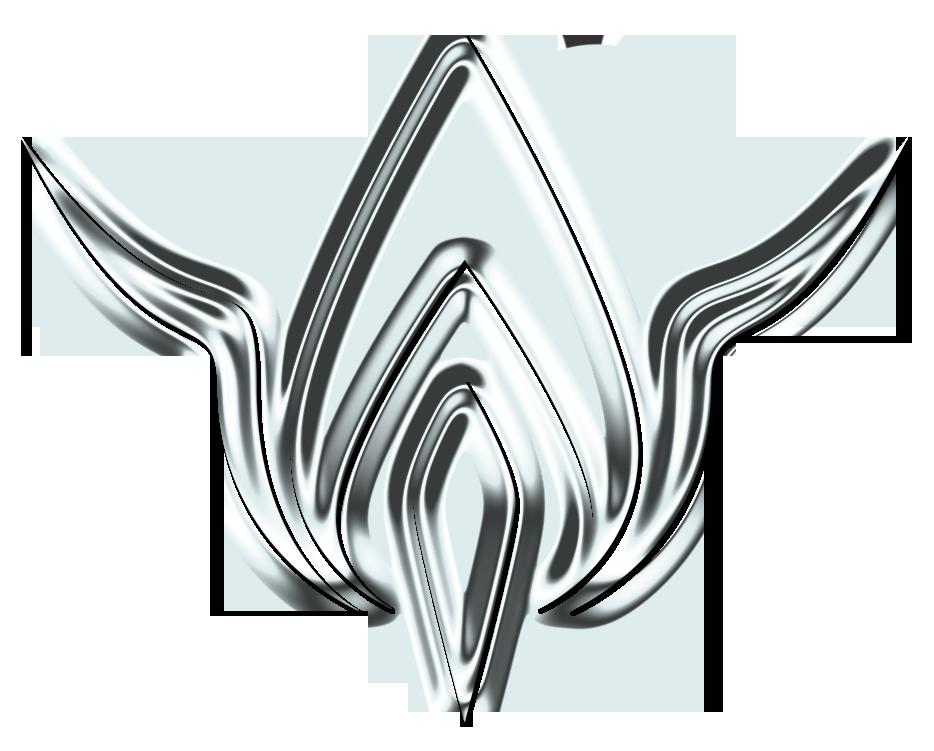 Gnost Logo