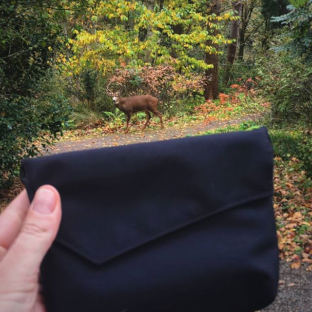 The deer are watching. Carry out your menstrual waste in a Go With Your Flow Pack. #leavenotrace