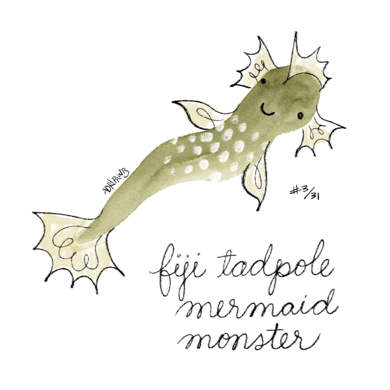 Fiji Tadpole Mermaid Monster
