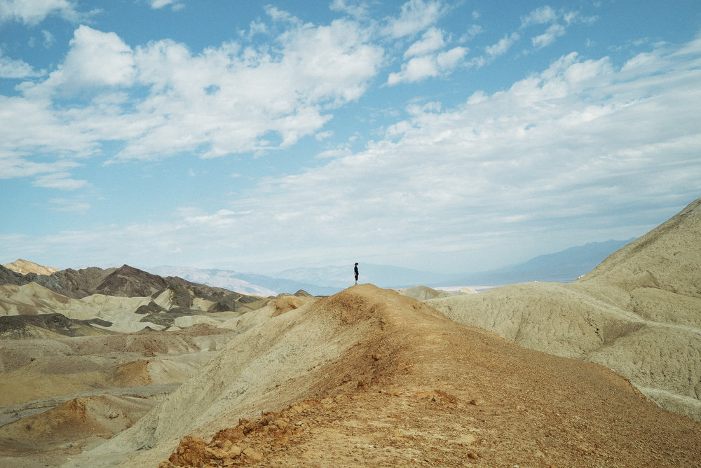 landscape - suitclean.jpg