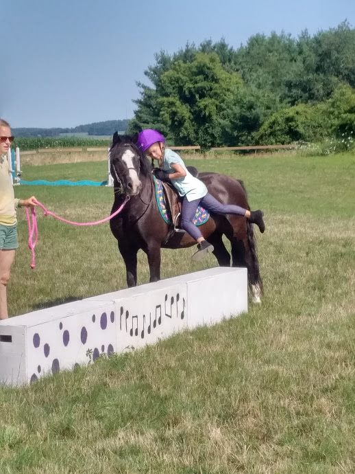 Stormy, 12.1hh, Welsh Section A Pony