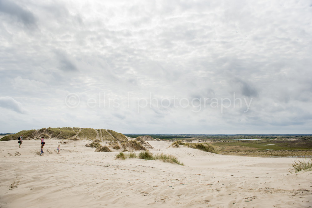Peaceful photograph of the dunes of Denmark. Dark clouds above the landscape photography.