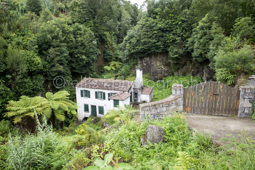 Cute old water mill house down in the valley. Captured in between mountains and lots of green. Idealistic setting. Dream house. Wooden gate leads to house down the river.