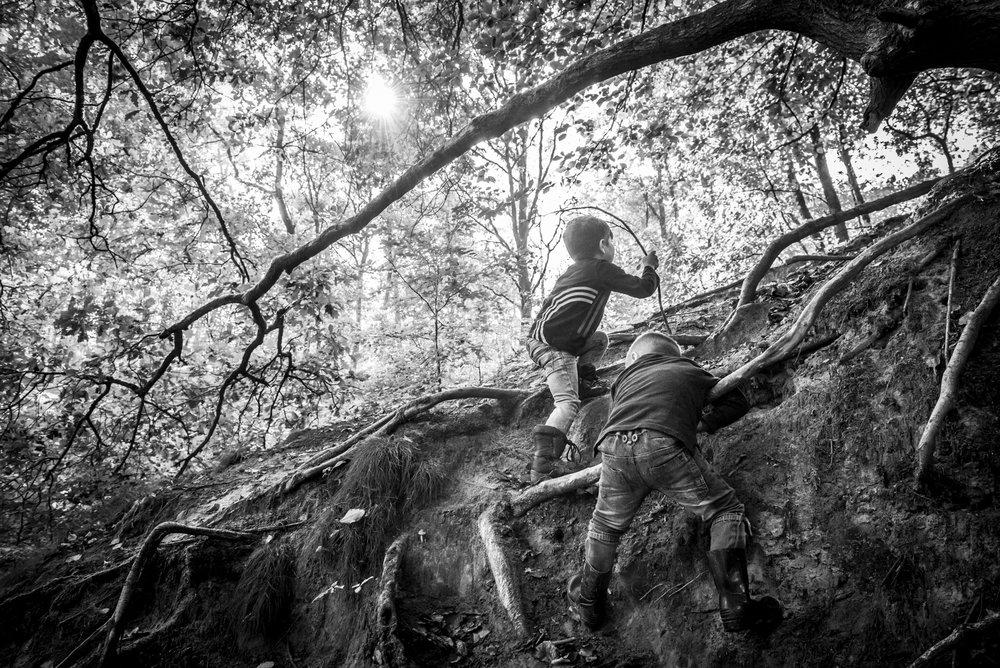 Day in the life familiefotografie. Twee broertjes zijn aan het klimmen in het bos. Aan de wortels van de bomen proberen ze omhoog te klimmen. Zwart wit fotografie door Ellis Peeters Photography.