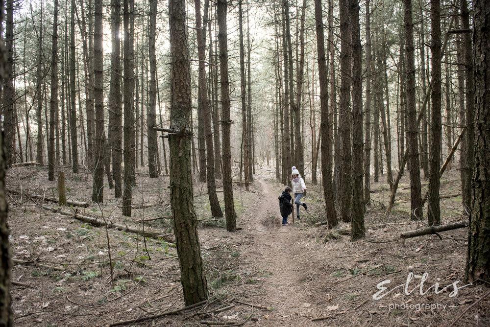 Spontane en ongedwongen foto's van kinderen in de natuur in het bos. Foto's genomen door Ellis Peeters Photography