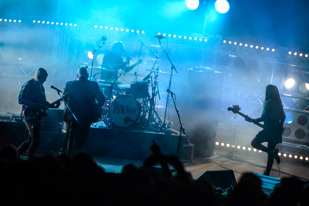 TALMARKES | Pixies 04.jpg