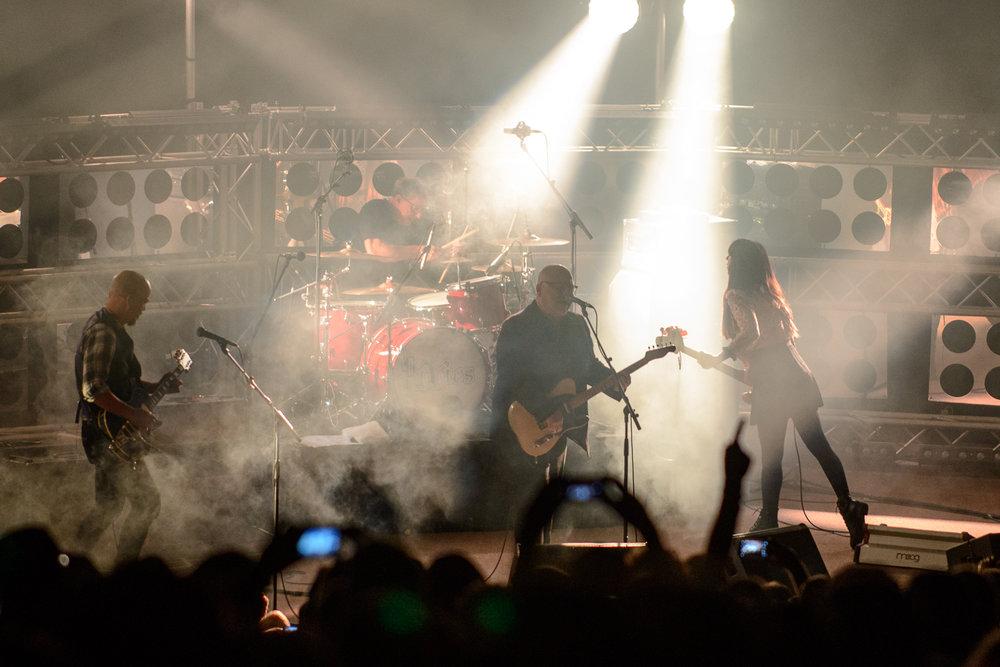 TALMARKES | Pixies 08.jpg