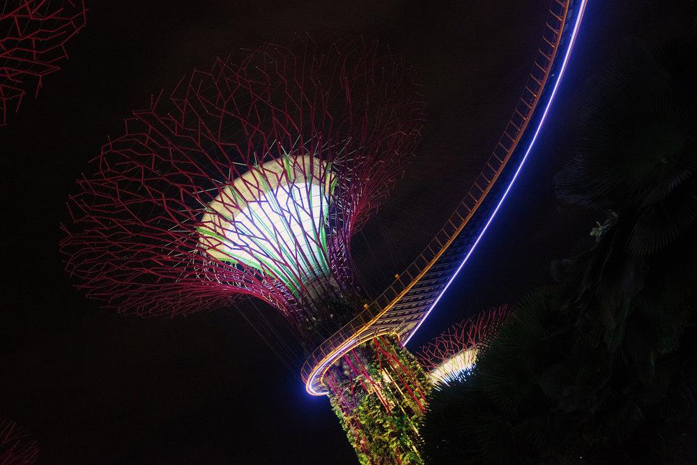 TALMARKES | Singapore 08.JPG