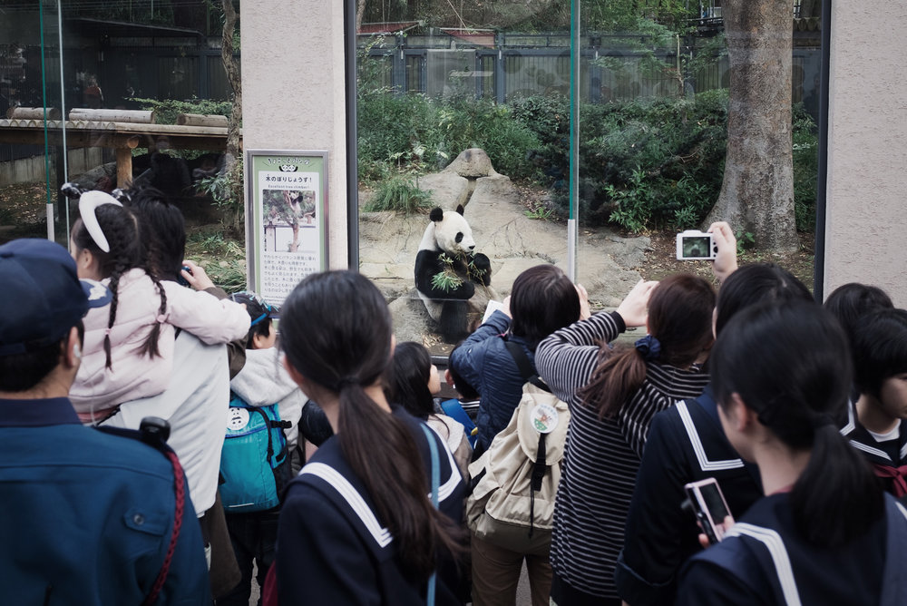 TALMARKES | Japan 059.JPG