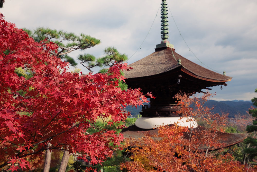 TALMARKES | Japan 063.JPG