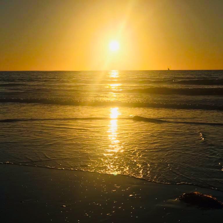 ON Venice Beach & BY THE OCEAN IN CALIFORNIA - Nov 2018