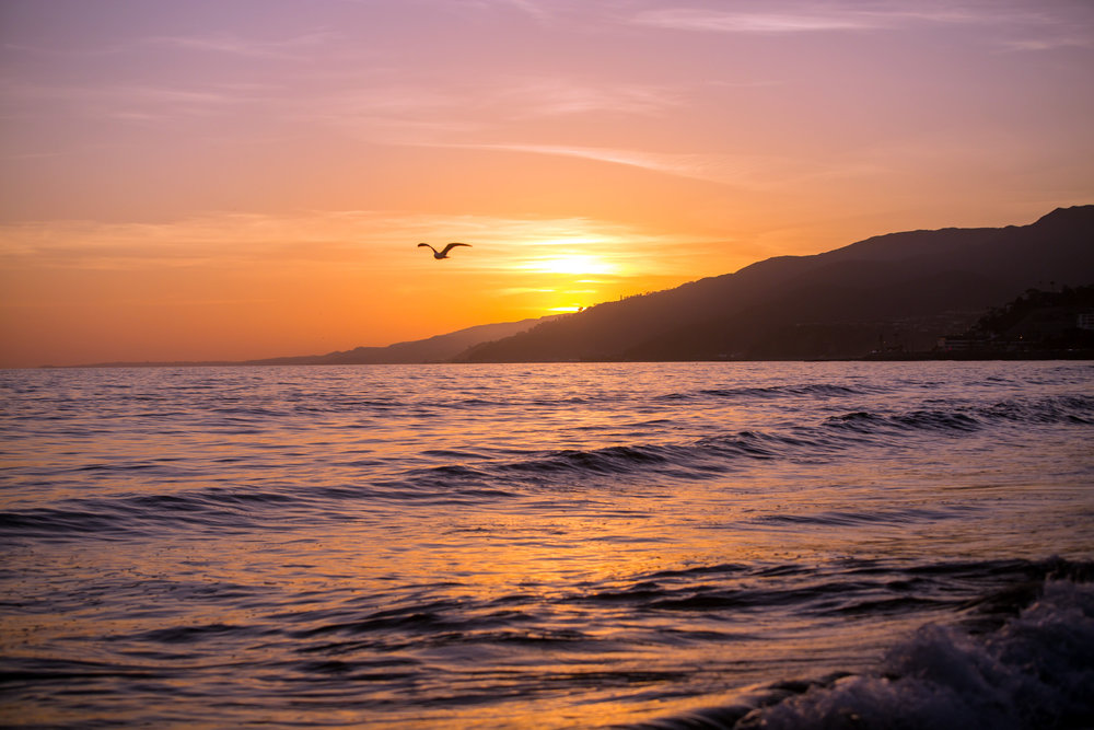 Marble_Falls_Horseshoe_Bay_Photographer_Beach_Family_Gandersons_16.jpg