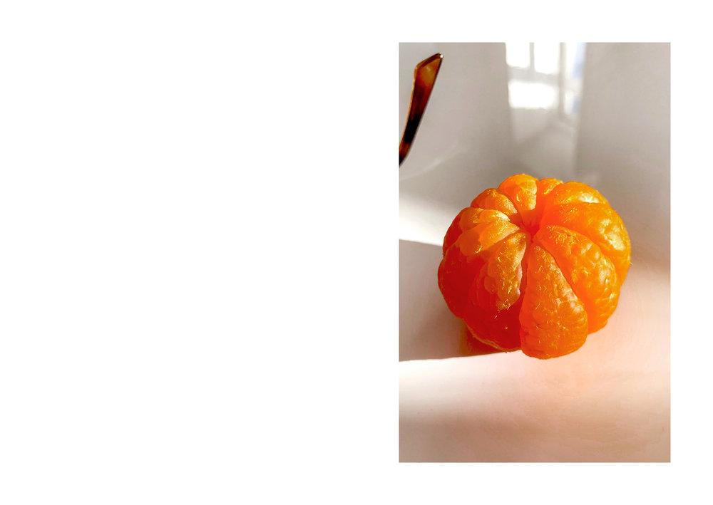 clementina15.jpg