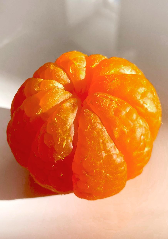 clementina19.jpg