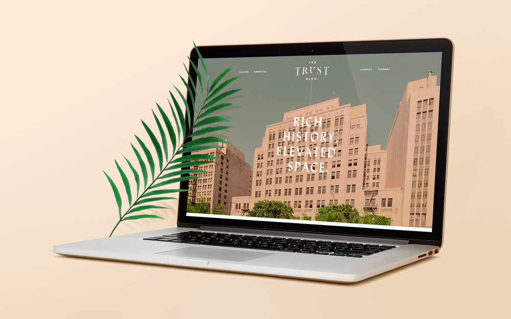 The Trust Building Website Design