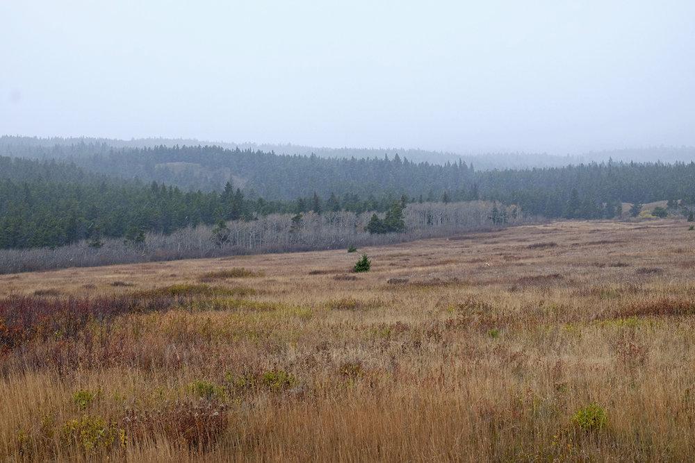 montana-gnp-DSCF5330-sm.jpg
