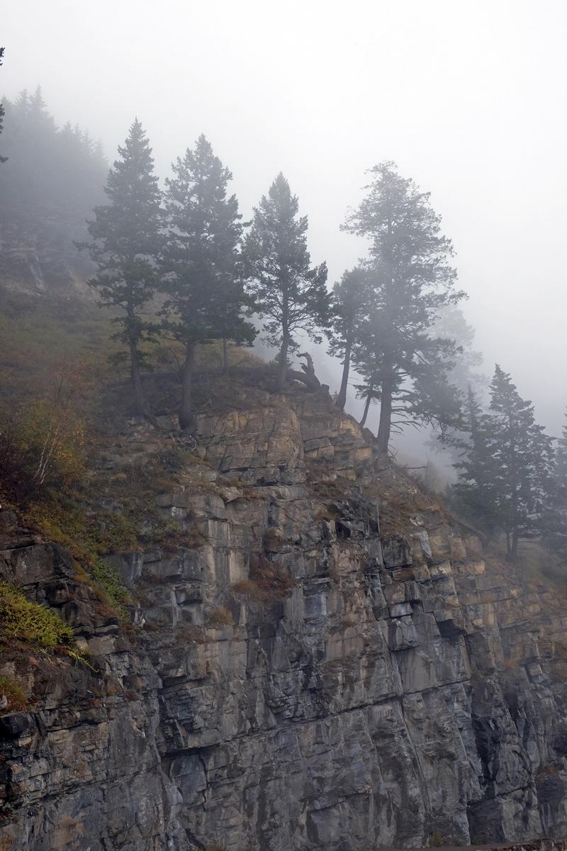 montana-gnp-DSCF5213-sm.jpg