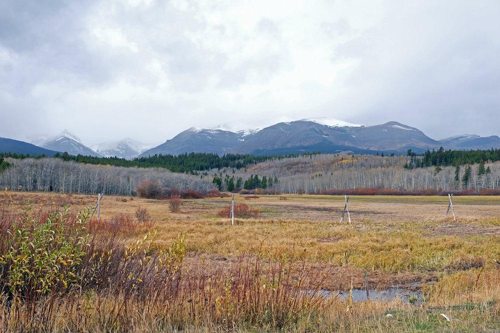 montana-gnp-hwy49-DSCF5681-sm.jpg