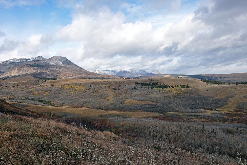 montana-gnp-hwy49-DSCF5851-sm.jpg