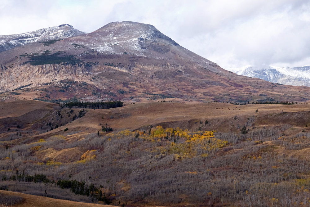 montana-gnp-hwy49-DSCF5857-sm.jpg