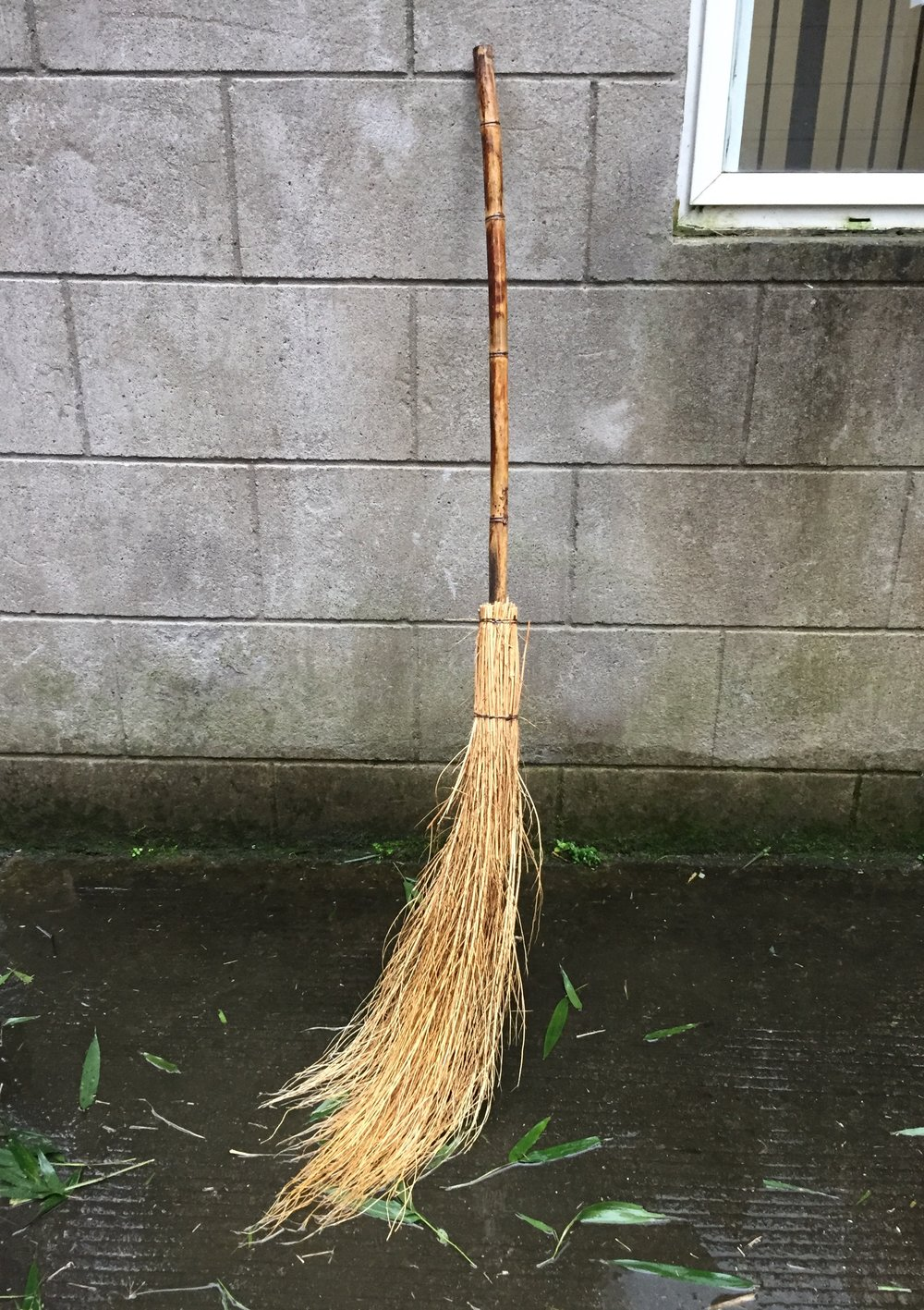 An authentic witches broom, jk.