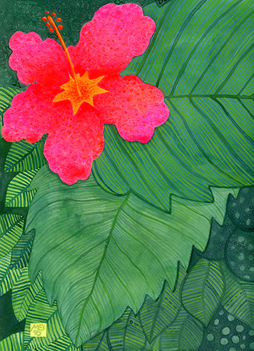 """Amapola""  From Tropical Illustrations collection.  Check out my  ART SHOP  for prints and greeting cards with this design."