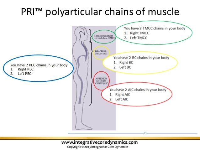sports-rehab-expertmay2013-15-638