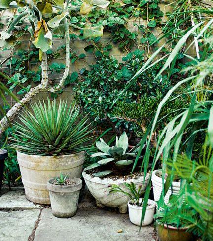 Green Pots.jpg