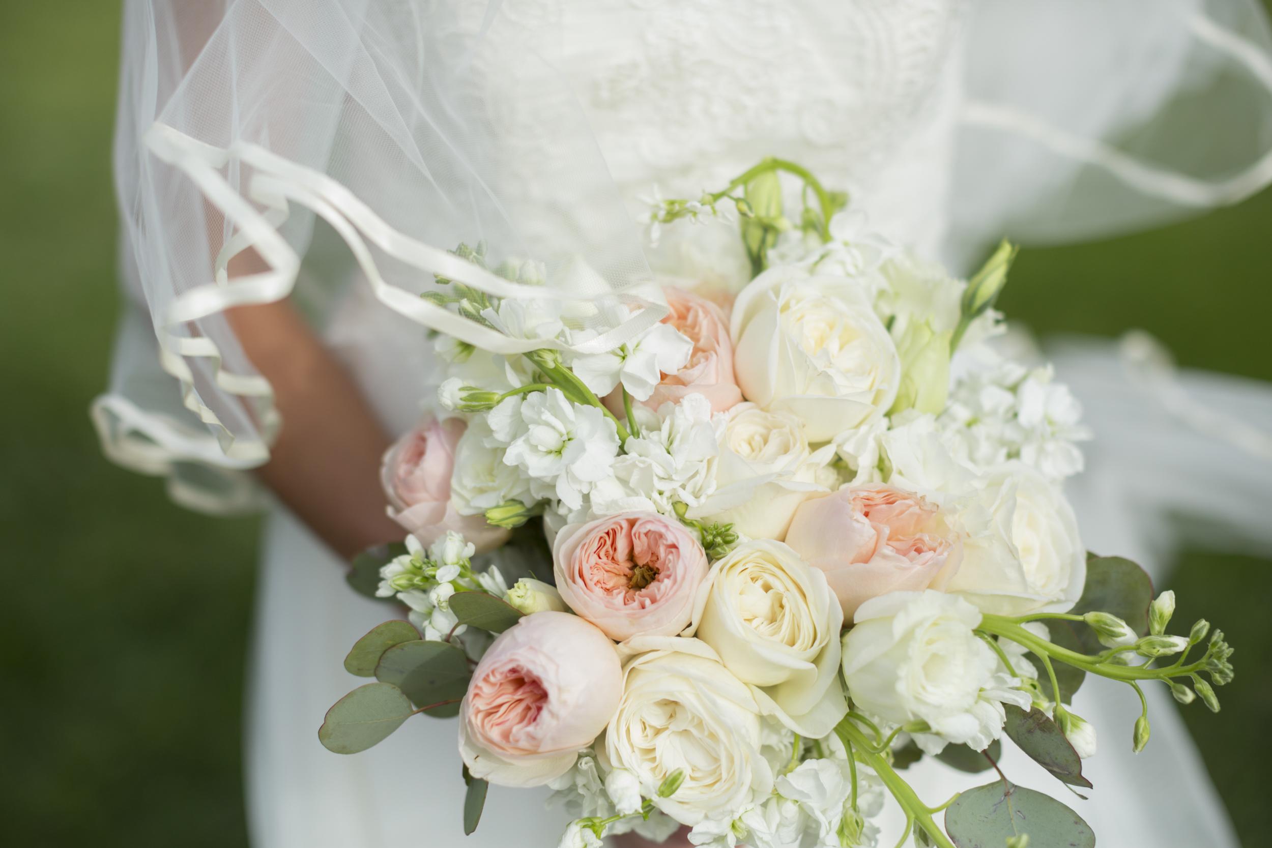 Weddings matzke photo clarissa and luke izmirmasajfo